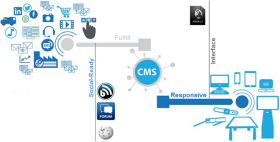 CMS Logical Schema